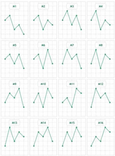 M型メリルパターン